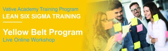 1 Day Course: Lean Six Sigma Yellow Belt Program